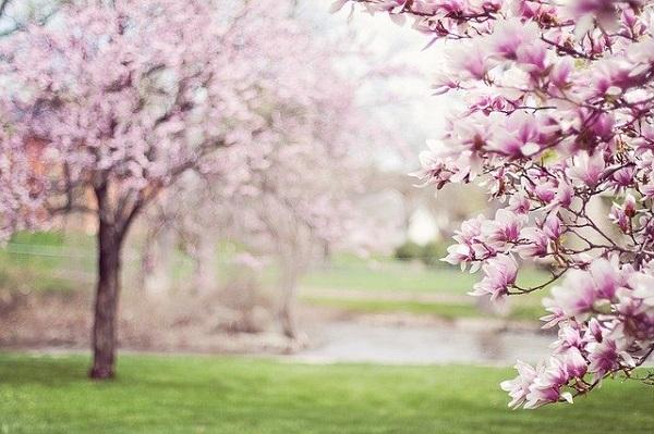 весна в Германии